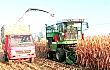 利裕丰9QZ-2050青饲料收获机质量可靠,收益高,特别适合中小地块