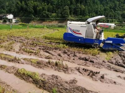下水入地+排泥倒水,看東風井關HC868G如何在濕亂田大顯神通!