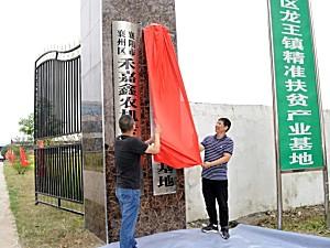 东风井关全国首家企社共建示范基地在襄阳落成,今日挂牌