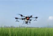 2020年植保無人機關注度TOP10榜單:大疆、極飛產品占9席
