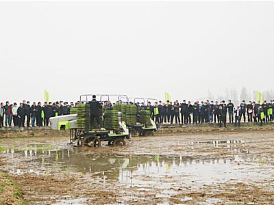 raybet32raybet承办江西省有序机抛秧技术演示培训会