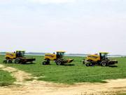 牧草收获正当时,田间忙碌纽荷兰