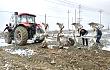 猛禽460液压过载保护翻转犁——新疆戈壁石头地的救星