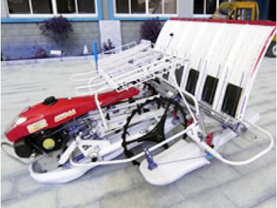 永涛富尔代2ZS-6A插秧机