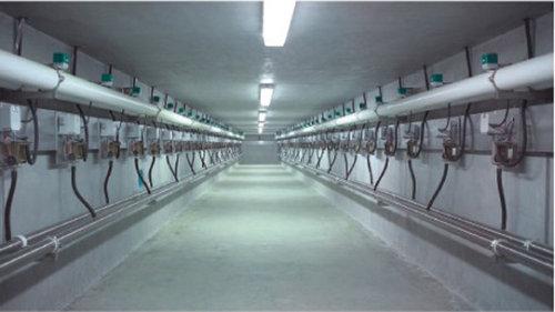 瑞海(GEA)9JGD-BL-48并列式电子计量型挤奶机