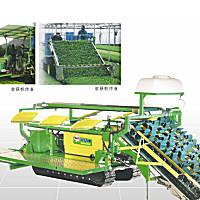 華龍4GZ-150蔬菜收獲機