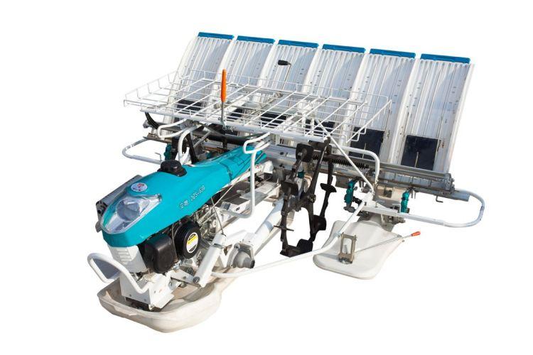 浙江立地2ZS-630手扶步进式水稻插秧机