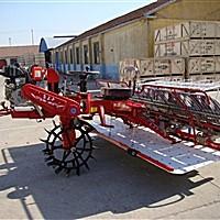 金王子2Z-8300水稻插秧机