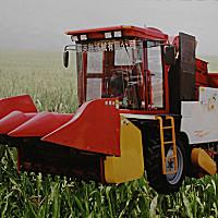 濰泰4YZP-3玉米收獲機