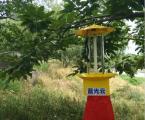 藍光云LGY-1交流電殺蟲燈