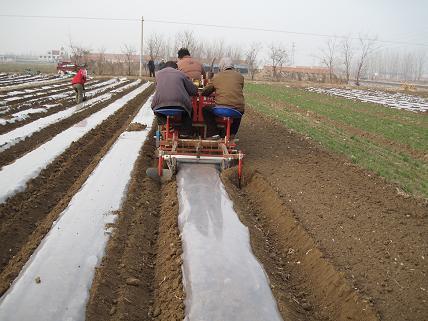 佳匯2CM-2/4A馬鈴薯播種機