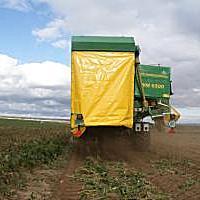 WM3000土豆收獲機