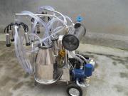 山東惠農雙桶真空奶牛擠奶機