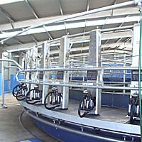 力欧9J-LEO-ZP系列挤奶机