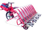 潍佳2Z-8238乘坐式水稻插秧机