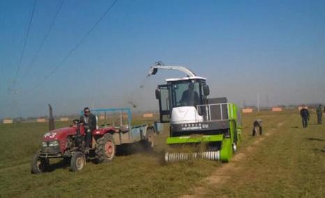 鑫農4QZ型自走式青飼料收獲機