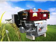 常林ZH195A(N)柴油机