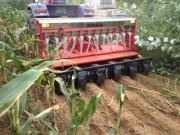 河东雄风200-7-14小麦免耕施肥沟播机