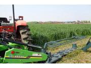 世达尔9GXD-2.4(MDM2400)割草机