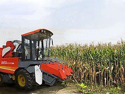 河北英虎4YZB-4C型玉米收獲機