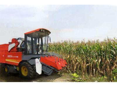 河北英虎4YZB-4C型玉米收获机