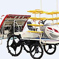 東禾2ZG-6(PH600)高速乘坐式插秧機