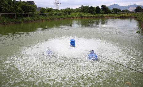 台州海凯双桥YL-3叶轮式增氧机