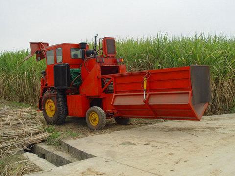 广西农机院4GZ-120甘蔗联合收割机