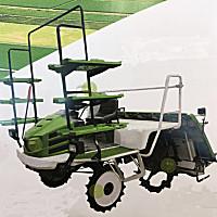 远播2ZG-630D1水稻插秧机