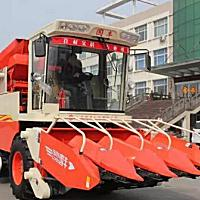 国丰4YZP-4E玉米收割机
