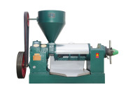 金泉YZYX115螺旋榨油机