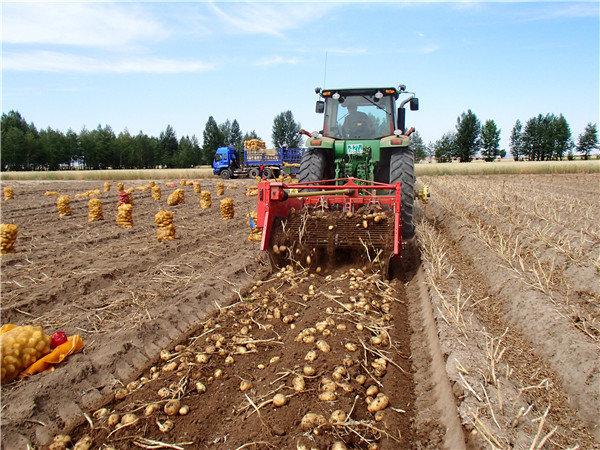 GRIMME(格立莫)WH200簡單式馬鈴薯收獲機
