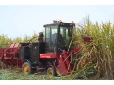 中首信4GQ-GZ180甘蔗联合收割机