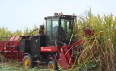 中首信4GQ-GZ180甘蔗聯合收割機