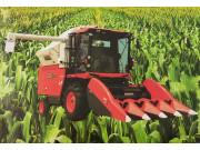 PRO1108-4Y玉米收获机