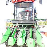 泰利农王4YZ-4A玉米收割机