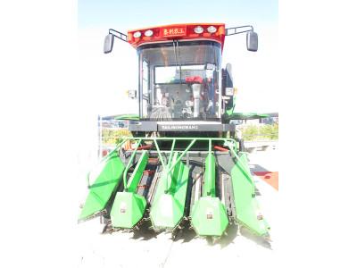 泰利农王4YZ-4A自走式玉米收获机