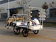 黄海金马2ZG-825乘坐式高速水稻插秧机