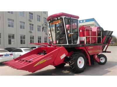 洛阳福格森4YZ-6自走式玉米收获机