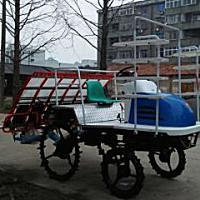 黄鹤2ZG-XRD6B插秧机