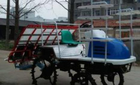 黄鹤2ZG-XRD6B乘座式高速插秧机