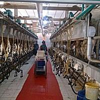 基伊埃9JGD-BL-48挤奶机