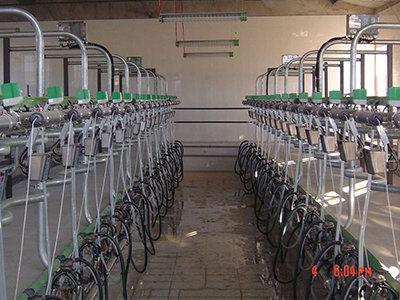 基伊埃9JGD-YGBE-32并列式挤奶机