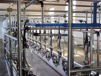 金农9JGJ-24挤奶机