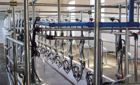 諾達金農9JGJ-24擠奶機