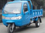 飞龙系列三轮汽车