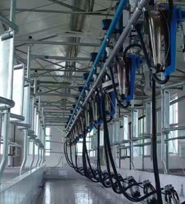 泰安意美特電子計量并列快退式擠奶機