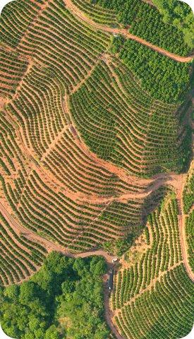 獲取農田數字地圖