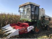 恒盛4YZ-4玉米收割割台