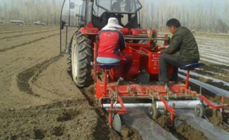 綠創機械2CM-1A土豆種植機